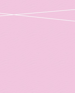 Basis Planner 2020 - Pink edition