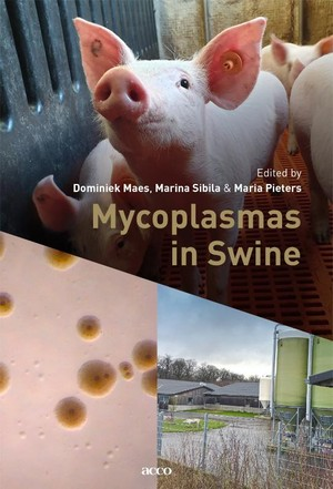 Mycoplasmas in Swine