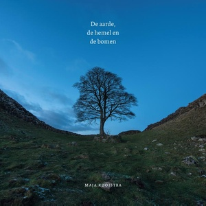 De aarde, de hemel en de bomen