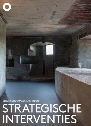Strategische interventies