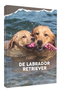 De Labrador Retriever