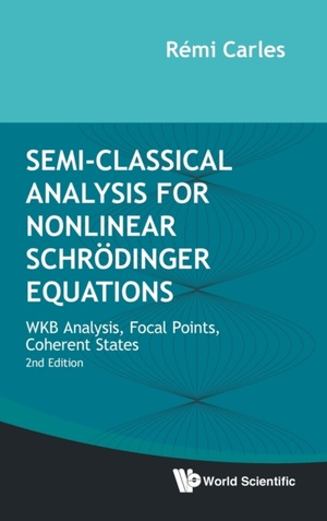Semi-classical Analysis For Nonlinear Schroedinger Equations